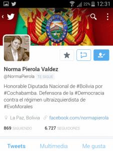 Norma Pierola diputada por Bolivia