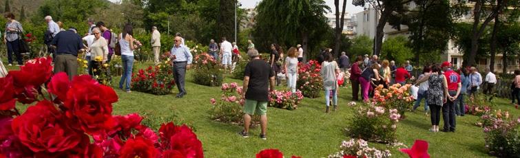 concurso-internacional-de-rosas-nuevas-de-barcelona