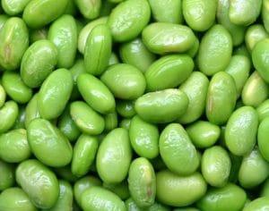 La importancia de la Proteína