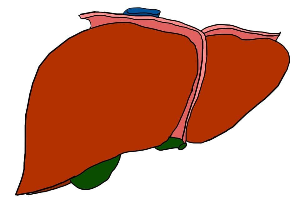 higado- metástasis hepáticas