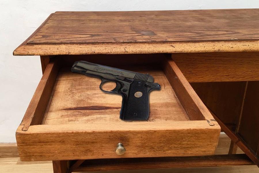 ¿Estás a favor de que se cambie la ley para que los españoles puedan disponer de un arma en su casa como pide Vox?