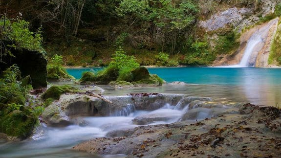 Los 5 Bosques más bonitos de España en Otoño