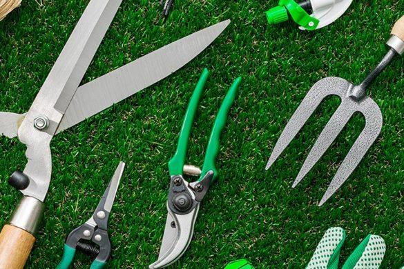 Las herramientas de poda y la importancia en jardinería